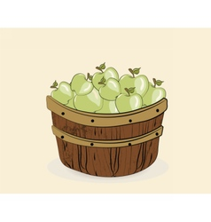 Green apples in a wooden basket vector image vector image