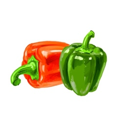 Picture of bell-pepper vector