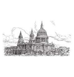 St pauls cathedral vintage vector