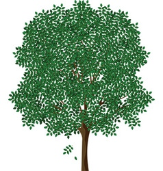 Tree designs vector image