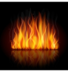 Burning flame background vector image