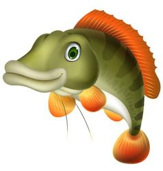 Bass fish cartoon vector