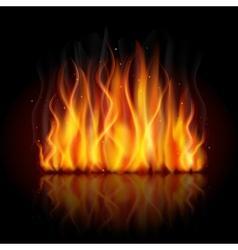 Burning flame background vector image