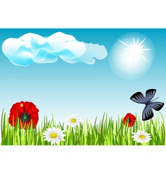 field with butterflies and flowers vector image