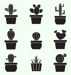 Set of cactus icons vector