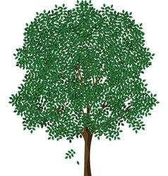 Tree designs vector image vector image