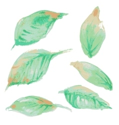 watercolor leaf design vector image