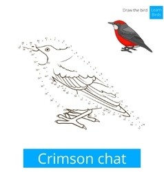 Crimson chat bird learn to draw vector