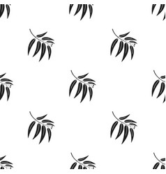 eucalyptus icon in black style for web vector image