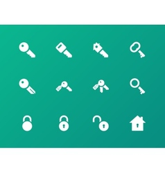 Key icons on green background vector