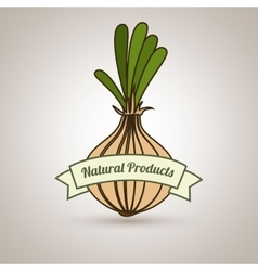 Natural products food healthy vector