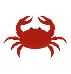 red crab icon isolated vector image