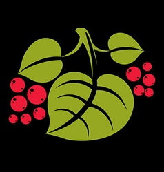 Three simple green tree leaves with red seeds vector