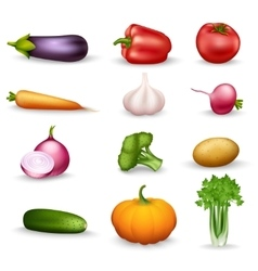 Vegetable health food colorful icons vector