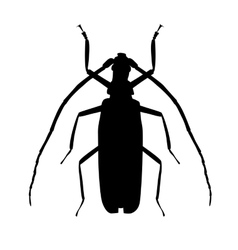 Large beetle silhouette vector