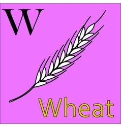 W letter alphabet coloring book wheat vector