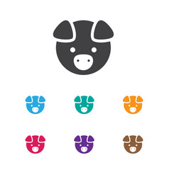 of zoology symbol on pig icon vector image vector image