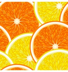 fruit design vector image
