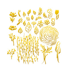gold hand drawn spring vector image