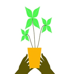 Flower pot on hands vector