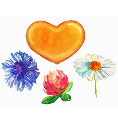 Watercolor honey heart and flowers vector