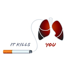 Smoking kills vector