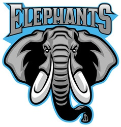 elephant head mascot vector image vector image