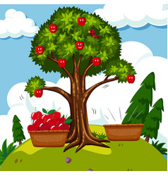 red apple tree in the field vector image vector image