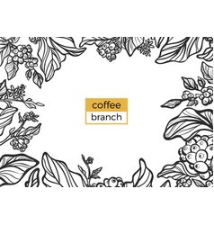 template branch coffee vector image