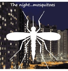 Mosquito in night town vector