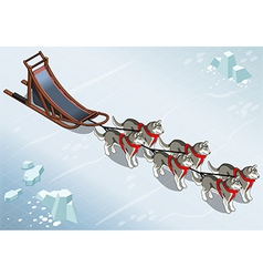 Isometric sled dogs in front view on ice vector