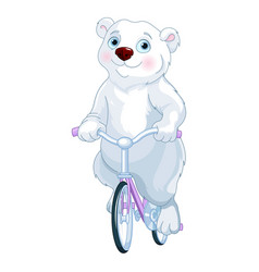 Polar bear riding a bicycle vector