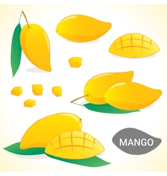 Set of mango in various styles and format vector image vector image