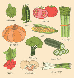 vegetables set colorful doodle vector image vector image