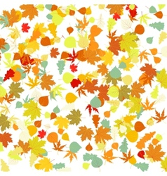 Autumn leafs pattern vector