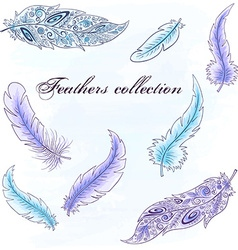 Hand drawn set of feathers can be used for vector