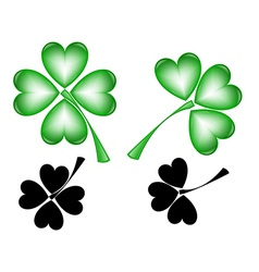 Leaf clover on white background vector image vector image