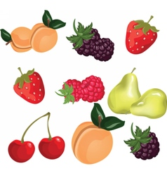 Summer fruits set vector image vector image