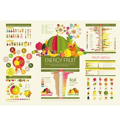 Basics of healthy nutrition vector image