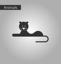 Black and white style icon lioness vector
