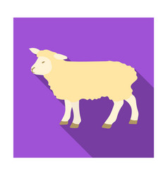 sheep icon in flat style isolated on white vector image