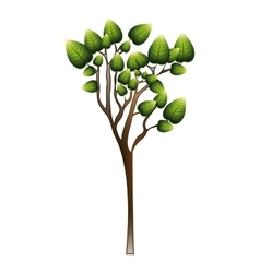 Silhouette tree with leafy branches vector