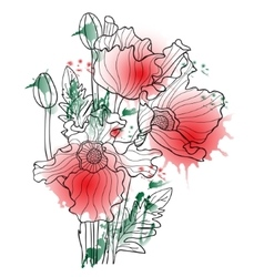 with watercolor poppy vector image vector image