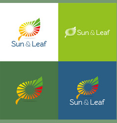 sun and leaf vector image vector image