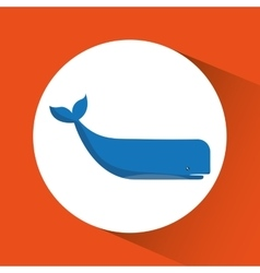 Whale cartoon over circle icon graphic vector