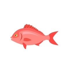Sea fish in pink color isolated vector