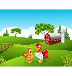 Cartoon chicken rooster in the farm vector image