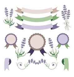 Lavender and ribbons design elements set vector image