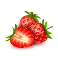Realistic detailed strawberry with slice vector