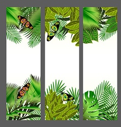 Tropical flowers and leaves over white vector image vector image